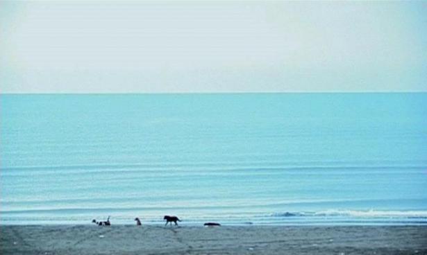 five_kiarostami
