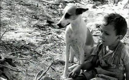 Vidas Secas (1963)